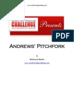 Andrews Report