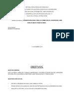 PLANIFICACION Desarrollo de Los Procesos