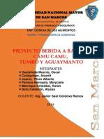 1. Avances proyecto