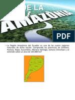 Clima de La Amazonia
