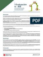 temarioCURSO-IEE.pdf