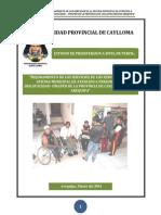 _mejoramiento de Los Servicios de La Oficina Municipal de Atencion a Personas Con Discapacidad _ Omaped de La Provincia de Caylloma Region Arequipa_ Final
