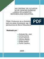 Producción de un Biofertilizante a partir de cepas Azotobacter spp. Aisladas de plantaciones de Stevia Rebaudiana