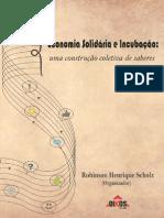 Economia Solidaria e Incubacao-E-book