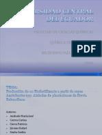 Producción de un Biofertilizante a partir de cepas Azotobacter spp. Aisladas de plantaciones de Stevia Rebaudiana2