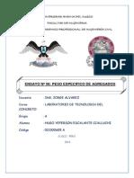 ENSAYO Nº 06 (Autoguardado)