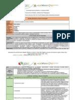 Instrumento_Estructura_de_Proyecto_Integrado_1_OCTUBRE.docx