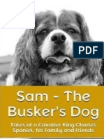 Sam - The Busker's Dog