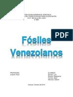 fòsiles venezolanos