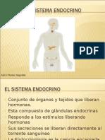 el-sistema endocrino