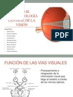 Nuerofisiologia Central Del Ojo