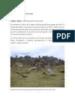 Campo Geologia-Santos 2