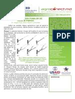 buletin_samburoase_nr_1_-_2014.pdf