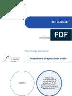 Instructivo ejecuci+¦n prueba.pdf