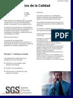 Boletin 2 (Ocho Principios de la calidad).pdf