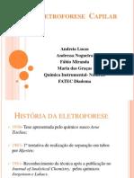 Eletroforese Capilar (5).Ppt Andreia