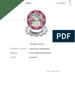 Informe de Poligonacion