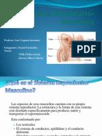 Anatomia (2)FASDGSDFAGSAFASDASDGSDFAGSAFASDASDGSDFAGSAFASDASDGSDFAGSAFASDASDGSDFAGSAFASDASDGSDFAGSAFASDASDGSDFAGSAFASDASDGSDFAGSAFASDASDGSDFAGSAFASDASDGSDFAGSAFASDASDGSDFAGSAFASDASDGSDFAGSAFASDASDGSDFAGSAFASDASDGSDFAGSAFASDASDGSDFAGSAFASDASDGSDFAGSAFASDASDGSDFAGSAFASDASDGSDFAGSAFASDASDGSDFAGSAFASDASDGSDFAGSAFASDASDGSDFAGSAFASDASDGSDFAGSAFASDASDGSDFAGSAFASDASDGSDFAGSAFASDASDGSDFAGSAFASD