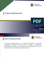Resumen Cultura Organizacional