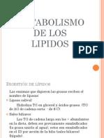 Tema 3 Metabolismo Lipidos 111 2 Parcial