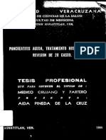 tesis-81.pdf