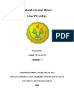 Anggi Dyah Aristi- Liver Physiology