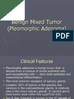 Benign Mixed Tumor