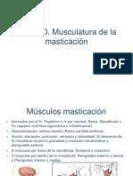 Tema 10. Musculosmasticacion y Músculatura Mímica