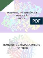 AULA 1 - Transporte 2