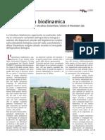 viticoltura biodinamica
