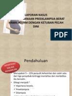 PEB case