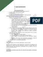 Key Activities in Rapid Assessment