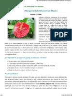 Post Harvest Management of Anthurium Cut-Flowers
