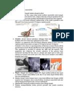 Pemeriksaan  radiologi mastoiditis.docx
