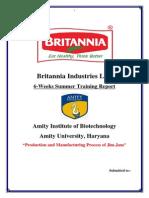Britannia SIP.docx