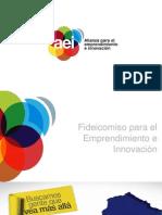 Fideicomiso Para El Emprendimiento e Innovacion