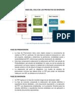 2 - Fases de Los Proyectos de Inversion Publica