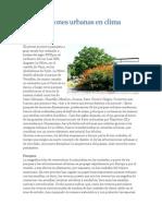 Arborizaciones Urbanas en Clima Cálido