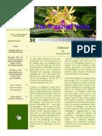 amazigh_voice_vol16_n2.pdf