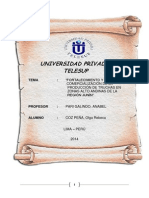 Proyecto Administra Final Patylu
