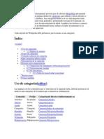 Categorizacion de Entrevista.docx