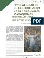La Justiciabilidad de Los Derechos Indígenas