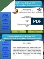 Propuesta de grado 2015