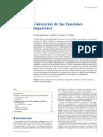 2007 Valoración de Las Funciones Superiores