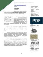 Quartum capitulum fabulae a Michaele von Albrecht pervenuste fictae, cui index DE SIMIA HEIDELBERGENSI