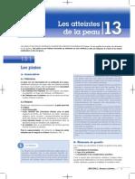 BSP 200.2 13 Atteintes de la peau.pdf