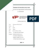 Informe de madiciones.pdf