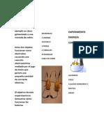 EXPERIMENTO CLAUDIO.docx