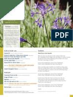 2013.06.30GraceToday.pdf