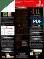 BCID2014_poster_final.pdf